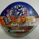 鍋焼うどん 日清のどん兵衛 天ぷらうどん [関西]